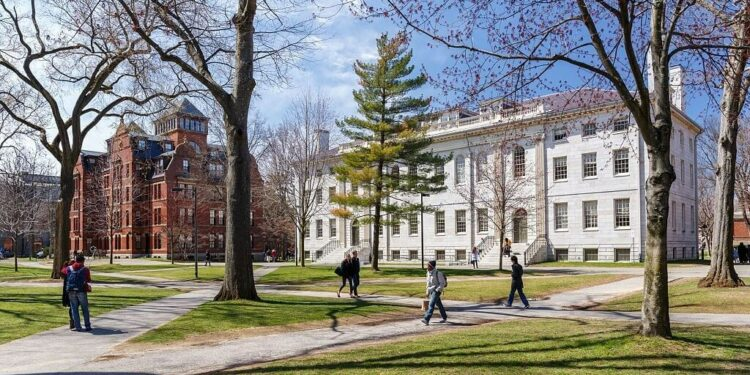 4 Ways to Boost Your Grad School Admissions Odds